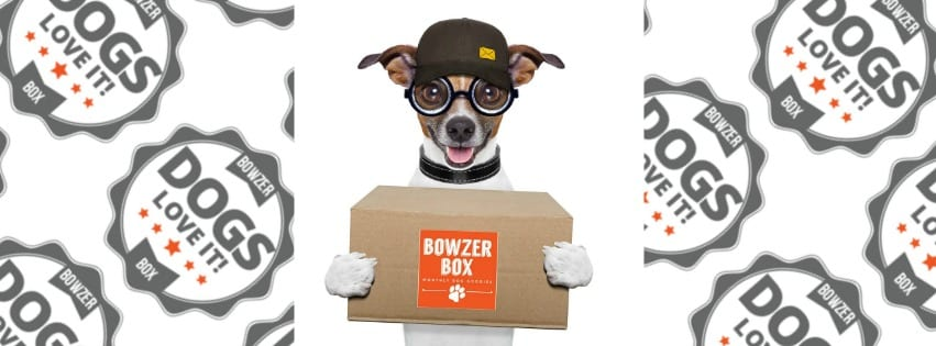 bowzer-box